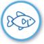 pescadosymariscos